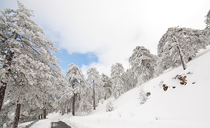 http://www.dreamstime.com/stock-photography-winter-landscape-troodos-mountain-image15920112