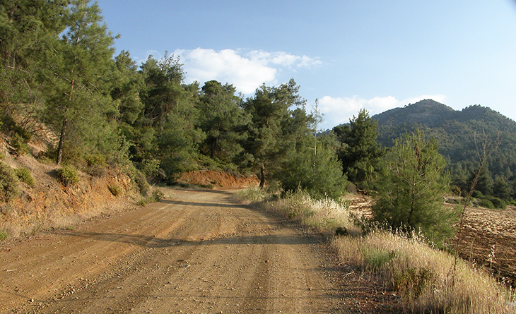 Country road from Troodos mountains in Cyprus