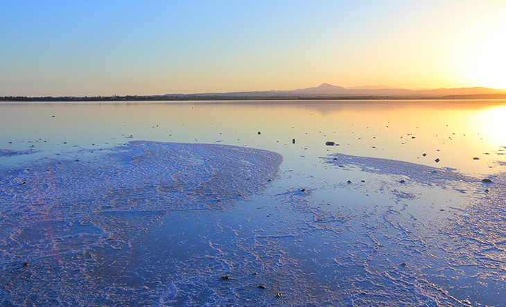 larnaca salt lakelow